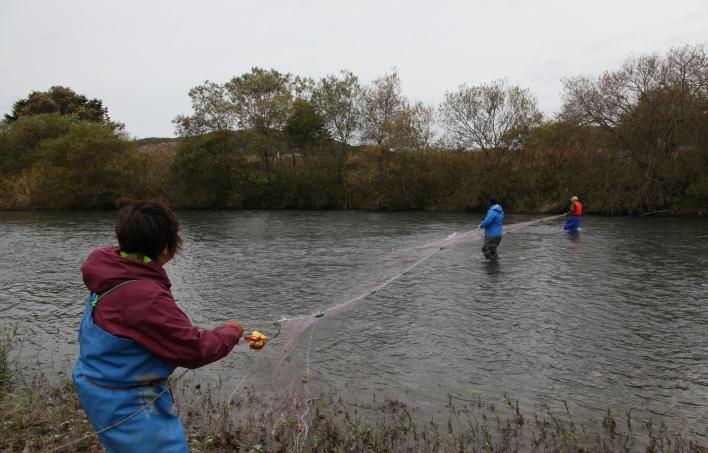 浦河地方におけるアイヌ伝統漁法及び加工技術の調査